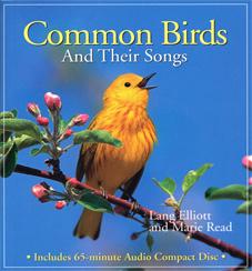 common_birds
