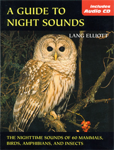night_sounds