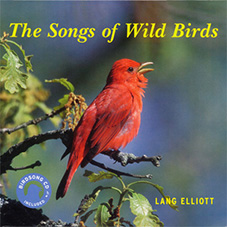 songs_of_wild_birds