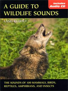 wildlife_sounds