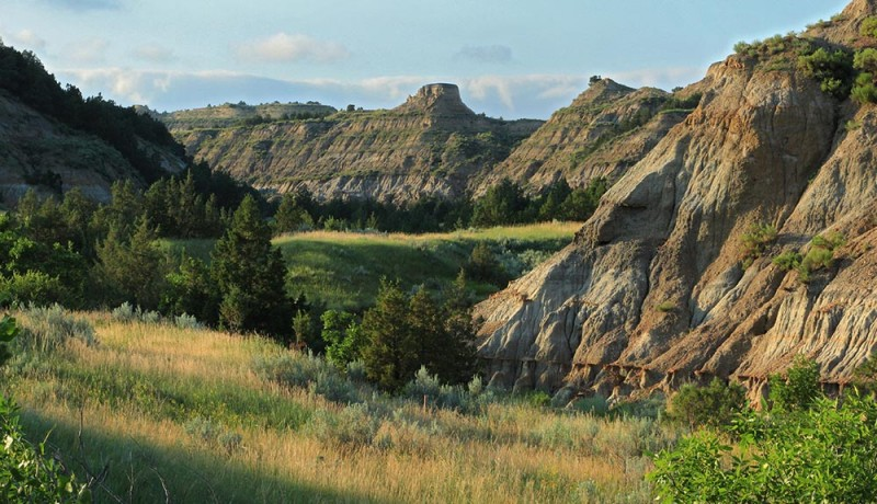 Caprock Coulee Featured Image