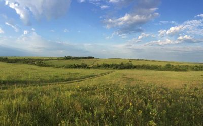 Journey Highlights #2 – Tallgrass Prairie