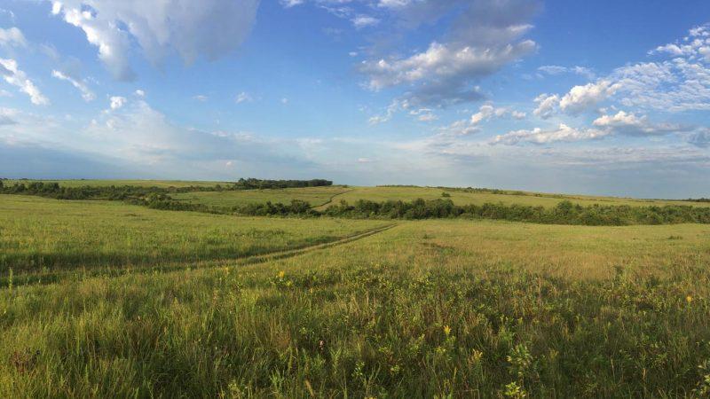 Taberville Prairie, SW Missouri, © Lang Elliott