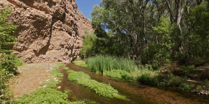 Aravaipa Canyon by Lang Elliott
