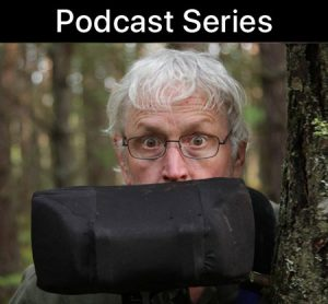podcast series - blurb art