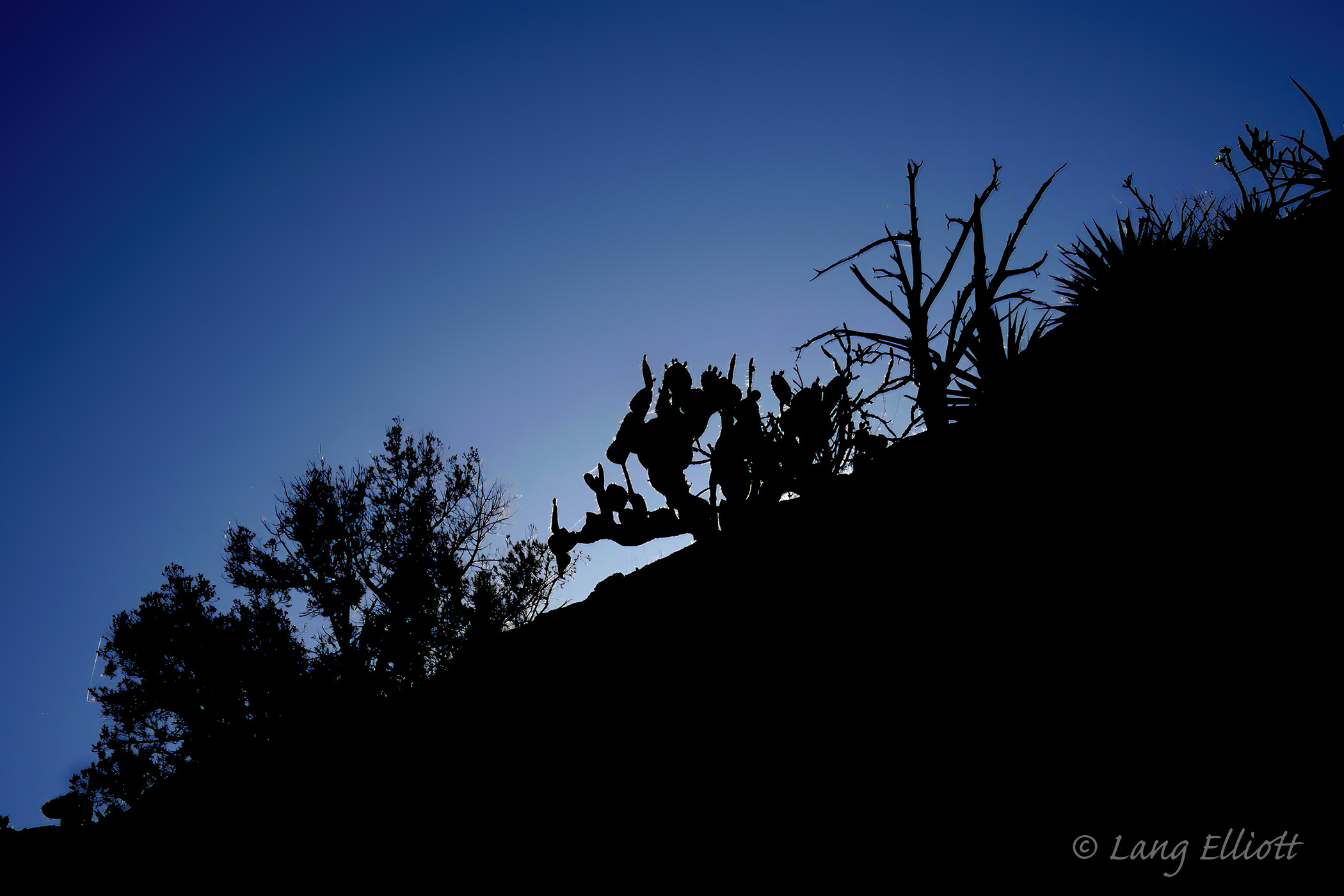 Aravaipa Canyon - cliff top silhouette at dusk © Lang Elliott